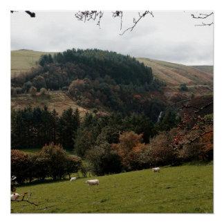 Poster Vallée Pays de Galles de fanion
