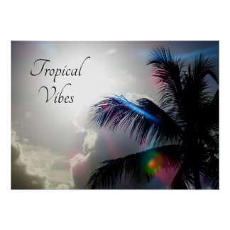Poster Vibraphone tropical