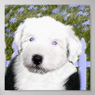 Poster Vieux chien de berger anglais