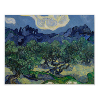 Poster Vincent van Gogh - les oliviers