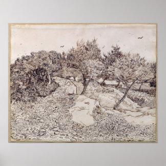 Poster Vincent van Gogh | les oliviers