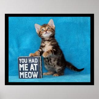 Poster Vous m'avez eu au chaton du Bengale de Meow