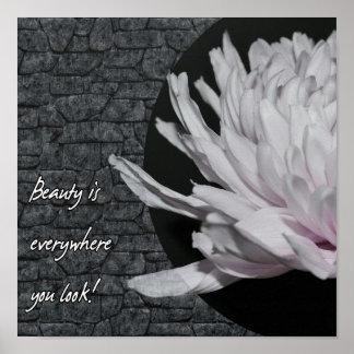 Poster Vous pouvez trouver la beauté n'importe où !