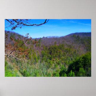 Poster Vue de Blue Ridge Mountains