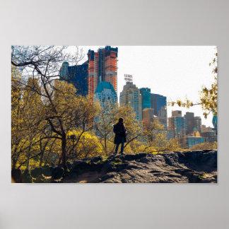 Poster Vue NYC de Central Park de Chambre d'Essex
