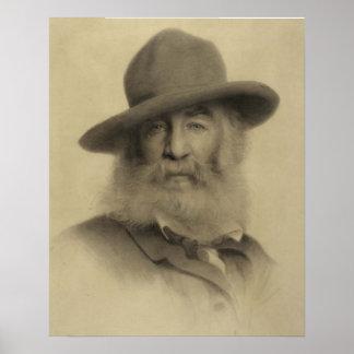 Poster Walt Whitman : Le bon poète gris