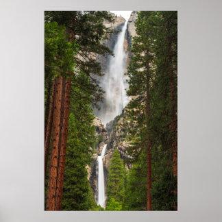 Poster Yosemite Falls, la Californie
