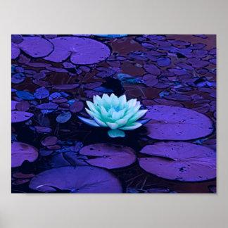 Poster Zen floral d'étang de turquoise bleue pourpre de