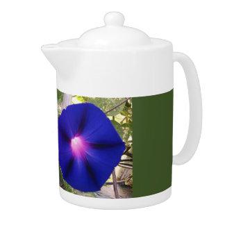 Pot bleu-foncé de thé de gloire de matin