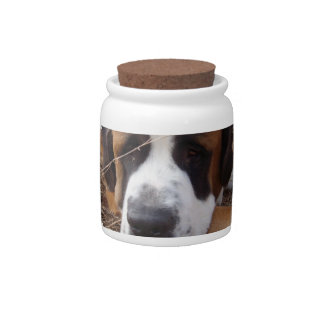 Pot de sucrerie de chien de St Bernard Boîte À Bonbons