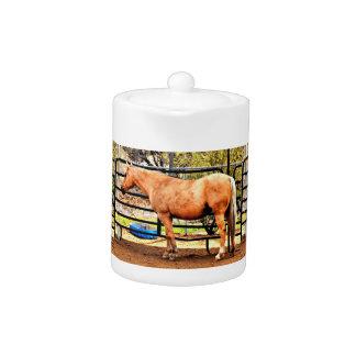 Pot de thé de cheval de palomino