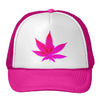 Pot rose casquette de camionneur
