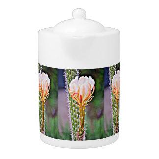 Pot rose de thé de fleur de cactus