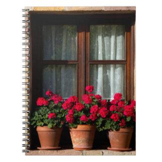 Pots de fleur de fenêtre dans le village carnets