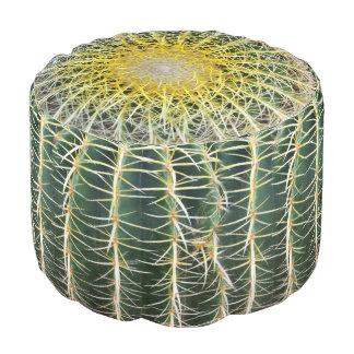 Pouf Cactus tropical inconfortable drôle