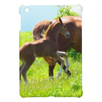 Poulain de bébé de poney de cheval mignon coques iPad mini