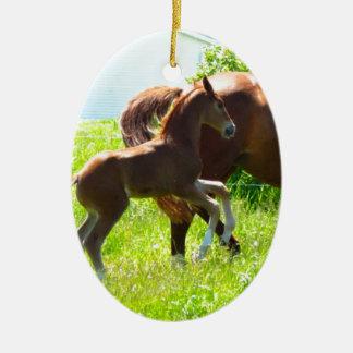 Poulain de bébé de poney de cheval mignon ornement ovale en céramique
