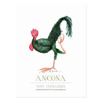 Poule d'Ancona, fernandes élégants Cartes Postales
