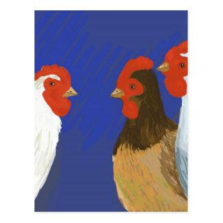 poules françaises carte postale