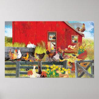Poulets à la ferme posters