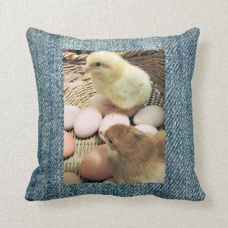 Poulets de bébé dans un panier, arrière - plan de coussin