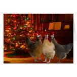 Poulets de Noël Cartes De Vœux