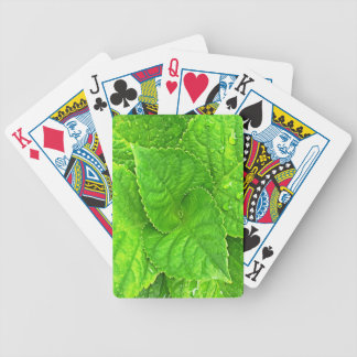 Pour l'amour de la nature cartes à jouer