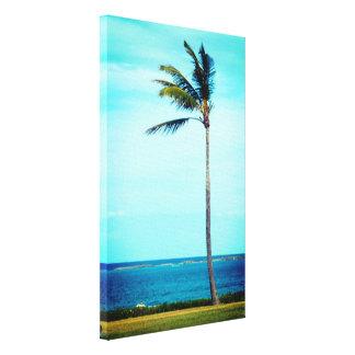 Pour toujours seulement palmier tropical toiles