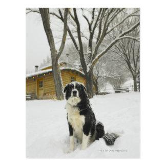 Poursuivez se reposer dans la neige avec le cabine carte postale