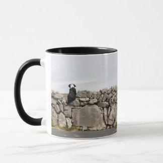 Poursuivez se reposer sur un mur en pierre mug