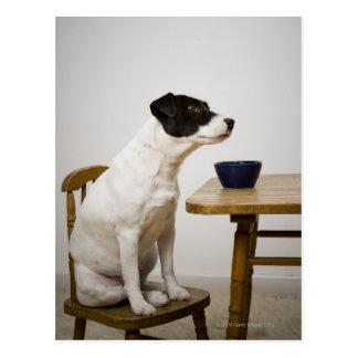 Poursuivez se reposer sur une chaise devant une carte postale
