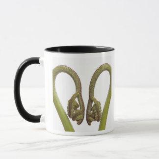 Pousses 2 de fougère mug