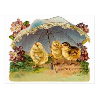 Poussins heureux de Pâques vintages Carte Postale