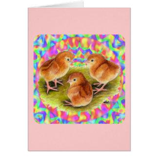 Poussins rouges de bébé cartes de vœux