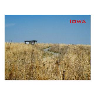 Prairie Cartes Postales