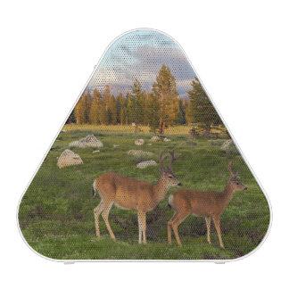 Pré de Tuolumne, Yosemite Haut-parleur Bluetooth