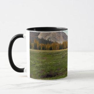 Pré de Tuolumne, Yosemite Mug