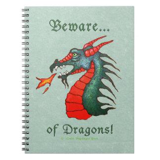 Prenez garde de la peinture de dragons carnets