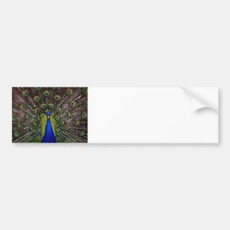 Présents de cadeaux de bleu royal de paon beaux autocollant de voiture