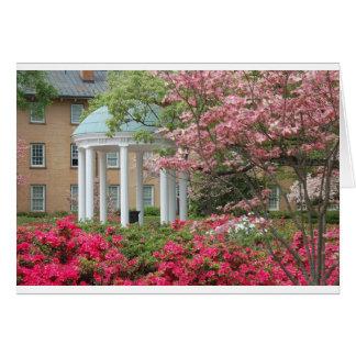 Printemps à Chapel Hill Carte De Vœux