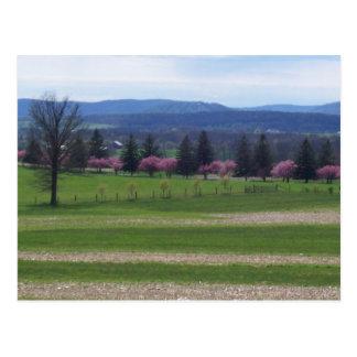 Printemps à Gettysburg Carte Postale