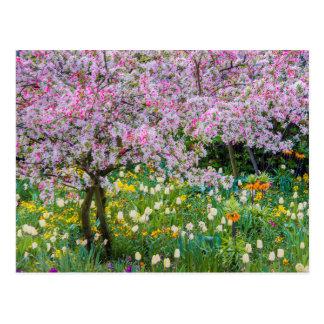 Printemps dans le jardin de Claude Monet Carte Postale