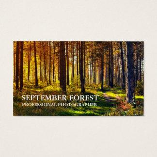Pro photographie (forêt) cartes de visite