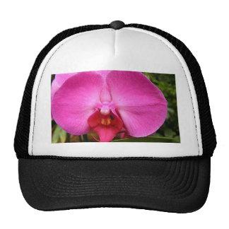 produit orchidée-rouge casquettes de camionneur