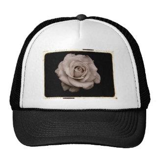 Produits roses casquettes