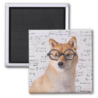 Professeur Barkley aimant de carré de 2 pouces