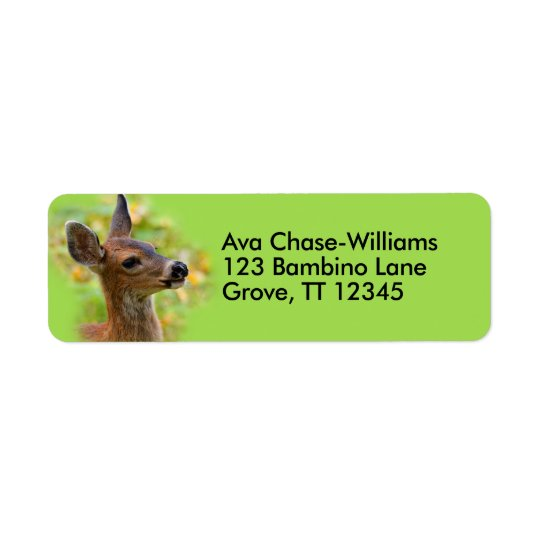 Profil d'un jeune cerf commun à queue noire étiquette d'adresse retour