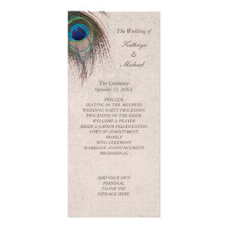 Programme de mariage de plume de paon