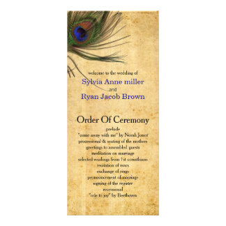 Programmes rustiques de mariage de plume de paon