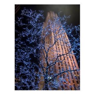 Promenade CricketDiane de nuit de New York City Carte Postale